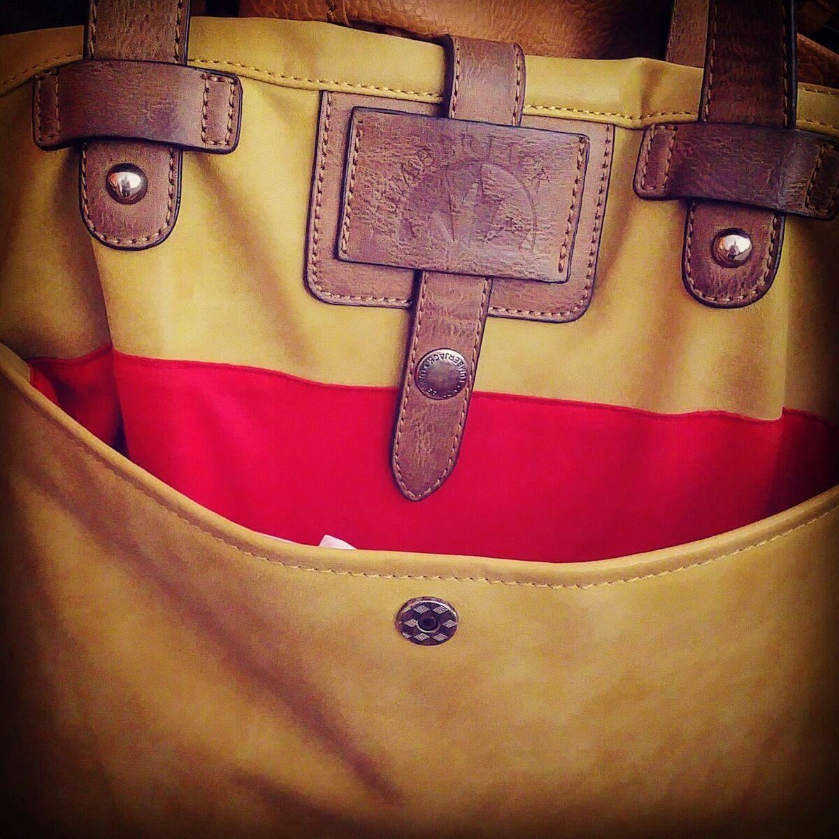 Il borseggiatore