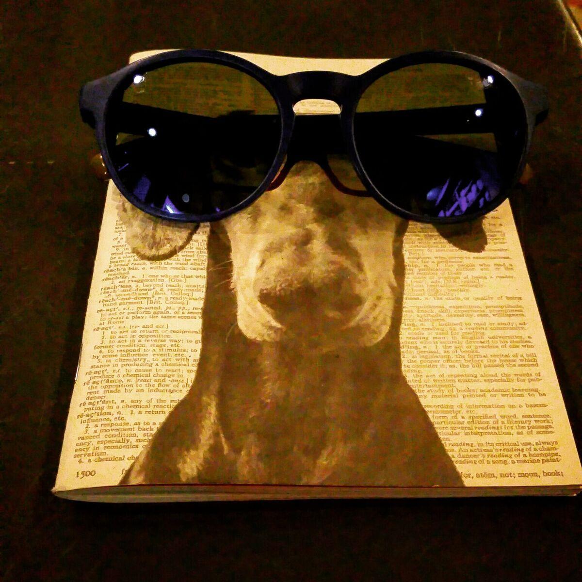 i miei occhiali super gettonati non conoscono confini