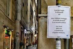 Sempre Genova