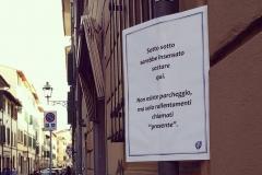 Firenze in versi erranti