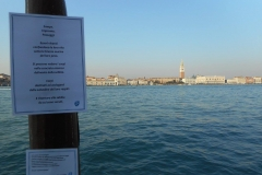 zampe Venezia