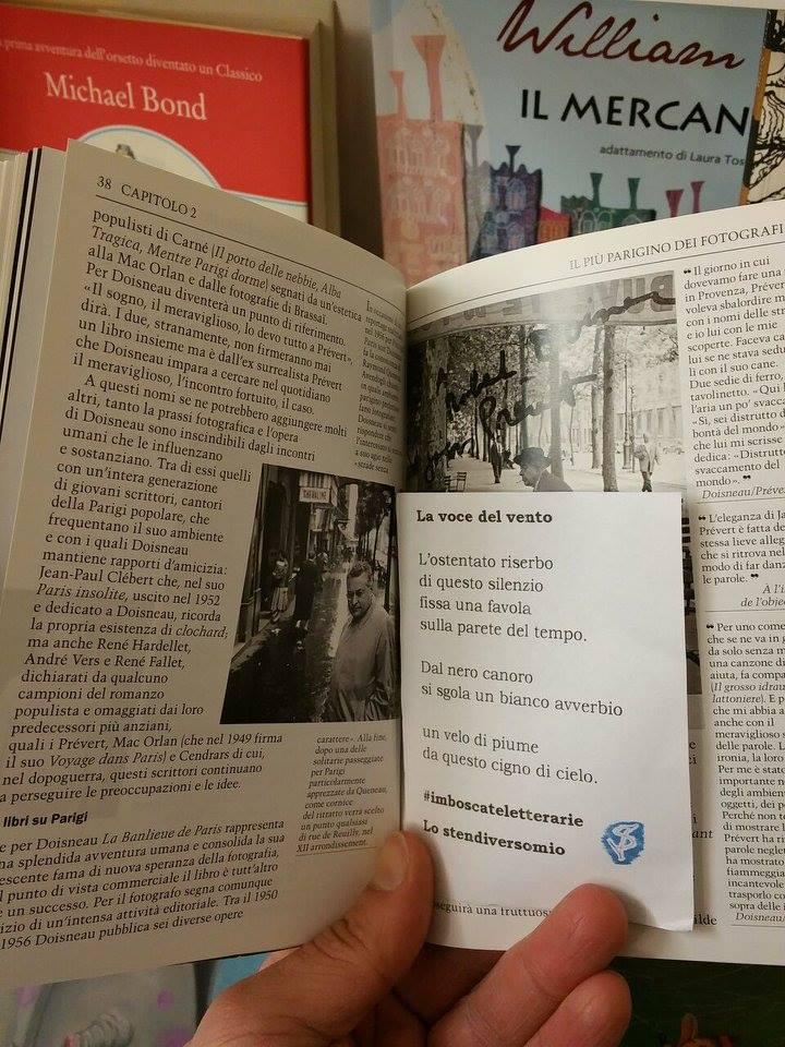 Montefeltro libri Urbino