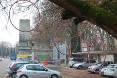 Un insolito albero di Natale