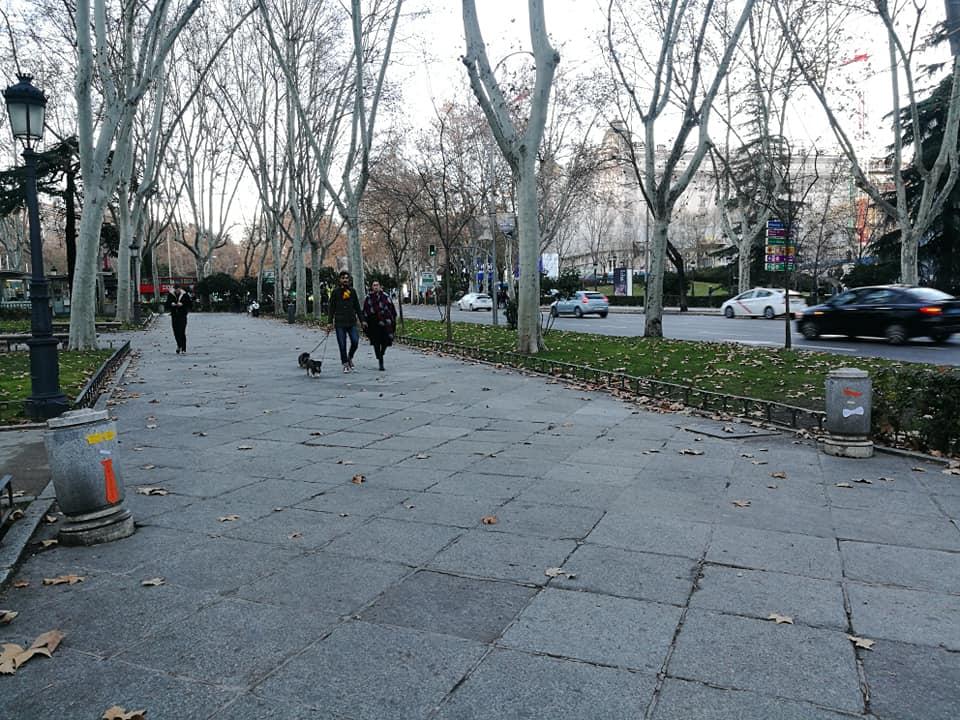 I guiardiani del Prado