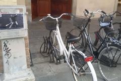 Reggio Emilia 2