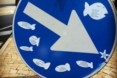 Pesci Arte Fiera