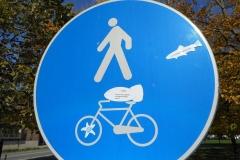 Nuovi obblighi stradali ferraresi. Pedoni, pesci e ciclisti dell'ultima ora