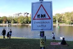 Very dangerous
